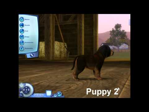 The Sims 3 Pets: Mixing Genetics