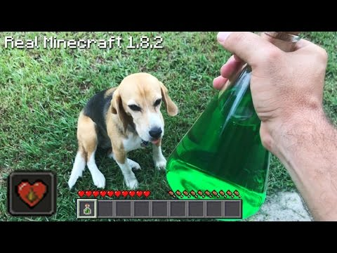 Real Life Minecraft - POTION OF POISON