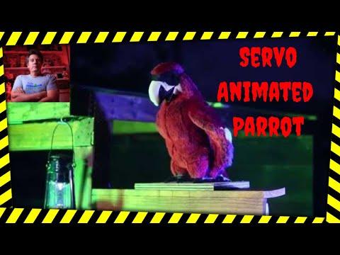 Bandit the DIY Animatronic Parrot