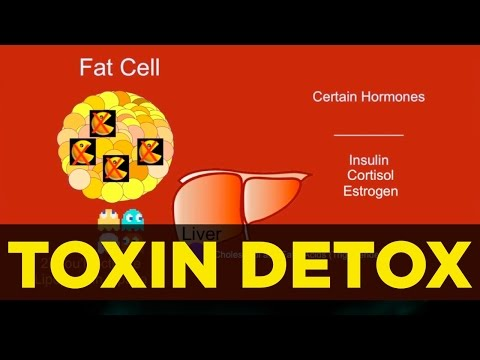 Thyroid Health & Toxins Detox For Thyroid Boost