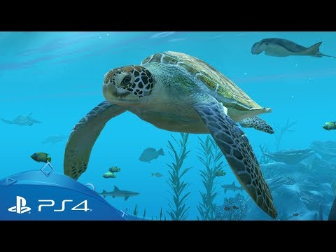 Aqua TV | Gameplay Trailer | PS4