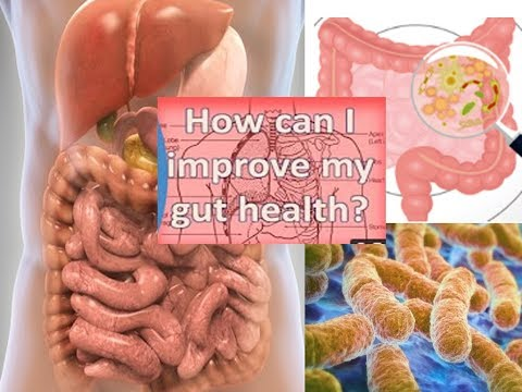 10 Ways to Cultivate Good Gut Bacteria and get rid bad Bugs also Reduce Depression Based on Science