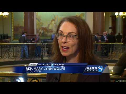 Legislators debate guns in local government