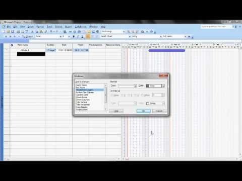 Microsoft Project Gridline.avi