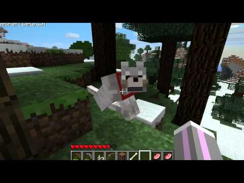 Minecraft  -  How To Tame A Pack Of Wolves
