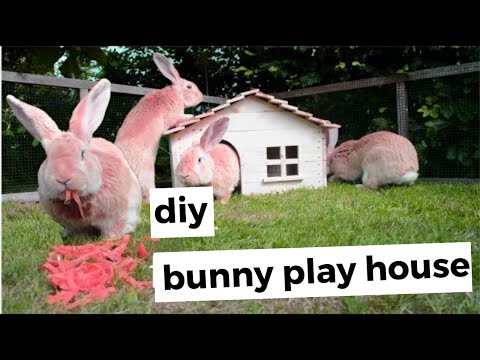 DIY bunny playhouse