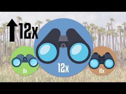 Understanding Magnification on Binoculars by Redstart Birding