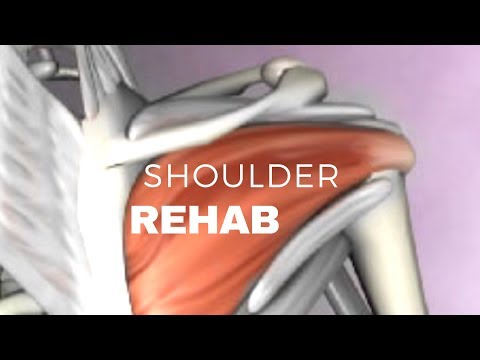 Shoulders Pain Relief ( WORKOUT )