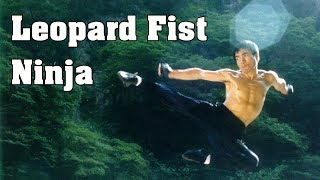 Jackie Chans The 36 Crazy Fists Full Hindi Dubbed Movie Siu