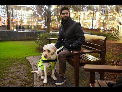 Blind Man Puts GoPro On Guide Dog To Expose Abuse In London | What's Trending Now!