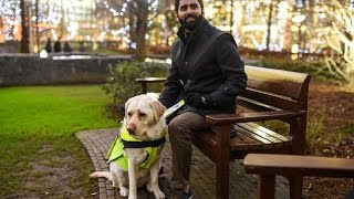 Blind Man Puts GoPro On Guide Dog To Expose Abuse In London | What