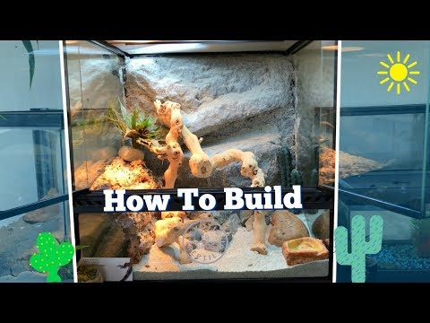How To Build A Desert Terrarium *Custom Background*
