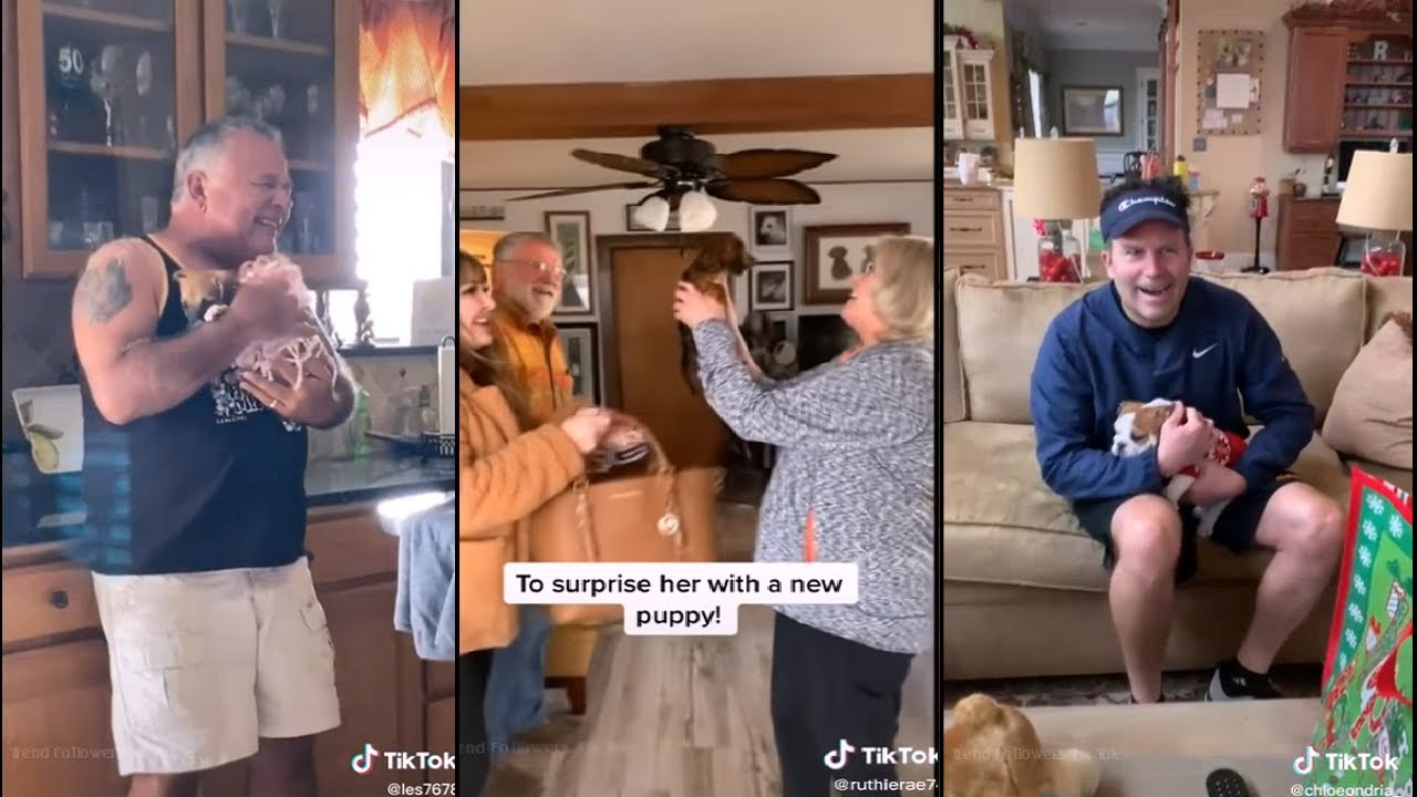 Surprising parents with their dream dog