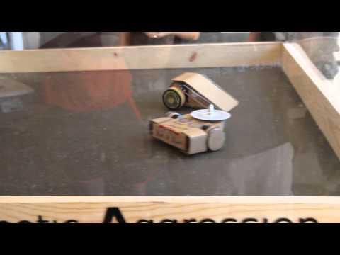 Cardboard Robot Wars - Round 2 - Columbia Gadget Works