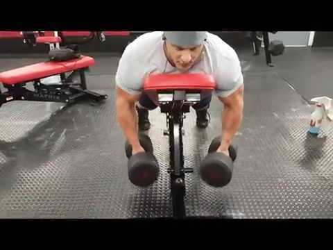 Building back muscle - Incline Dumbbell Rows
