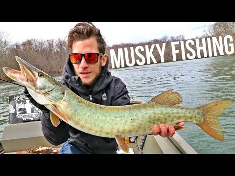 The Hunt For The Fish Of 10,000 Casts - Early Spring Muskie - When the Hard Work & Hours Pay Off!