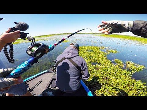 This SECRET BAIT Catches Big Fish