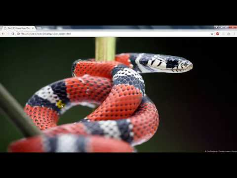 How to Make Image SlideShow in HTML Without JavaScript | How to create a Image Slider in html