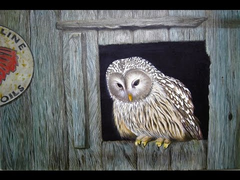 Art lesson : How to paint an Owl with Dimension Acrylic Paint