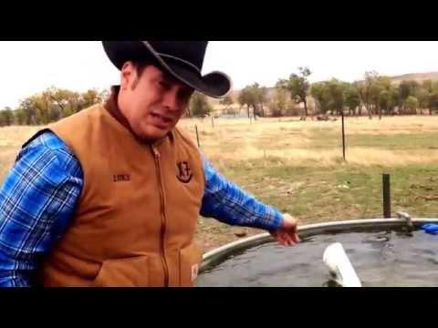 Livestock water tank Tip