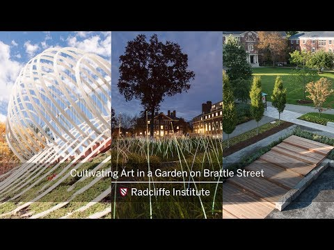 Cultivating Art in a Garden on Brattle Street || Radcliffe Institute