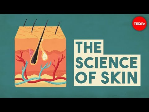 The science of skin - Emma Bryce