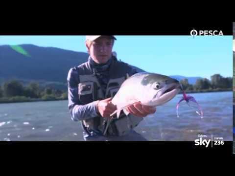 PESCA TV SKY 236 - PASSIONE ARTIFICIALE SPECIALE CANADA - pillola