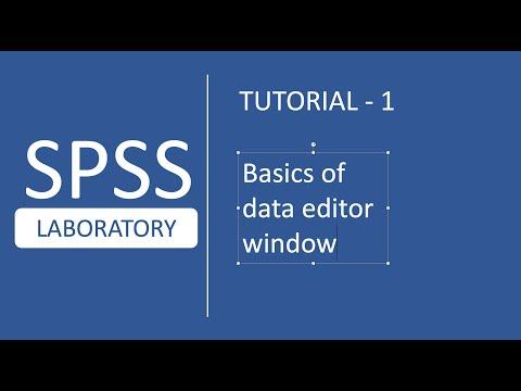 SPSS Tutorials # 1 : Basics of Data Editor Window in SPSS