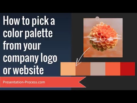 How to Pick Color Palette from Company Logo or Website ( in PowerPoint)