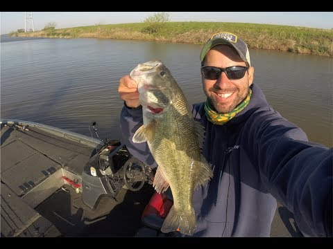 Urban Bass Fishing in the Spring