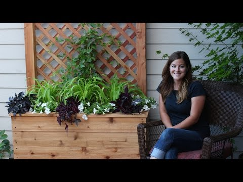 How to Build a Trellis Planter