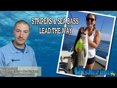 May 31, 2018 New England Fishing Report with Toby Lapinski