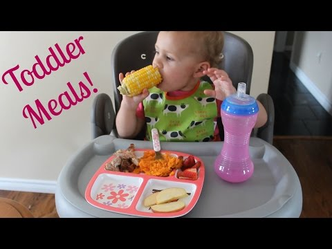 Toddler Meals | What I Feed My 19 Month Old