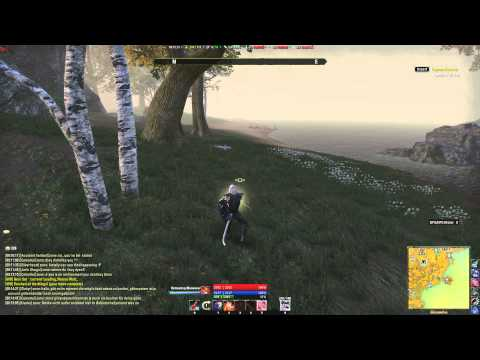 Elder scrolls online Night's silence stealth speed