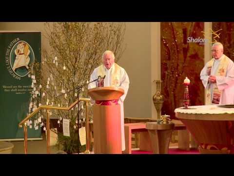 Holy Mass,  St. Peter & Paul's Catholic Church, Portlaoise, Co. Laois, Ireland - Nov 01 2016