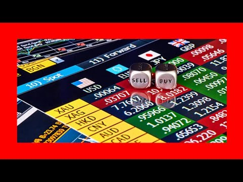 How to Choose the Best One Currency Trading Companies