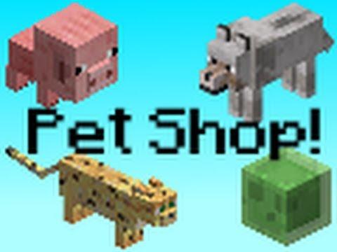 MINECRAFT - PET SHOP!