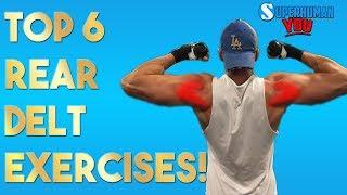 Top 6 REAR DELT Exercises  For Perfect Shoulders!