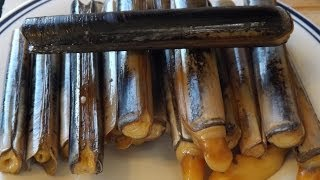 How To Catch And Cook Razor Clamsseashore To Plate