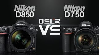 Nikon D850 vs Nikon D750 vs Sony RX10 IV in Wildlife Photography
