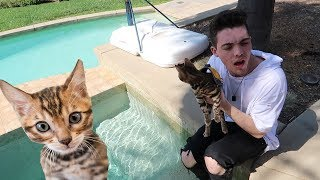 FaZe Adapt Tries to Take Care of a Cat.. (Part 2)