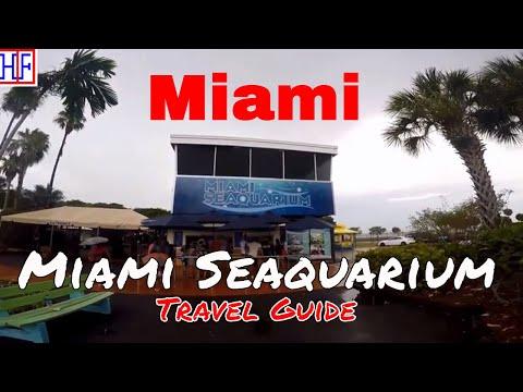 Miami | Miami Seaquarium - Amusement Park, Educational and Rescue center  | Travel Guide | Episode#5