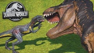 Download Jurassic World Evolution: BIGGEST BATTLE ROYAL YET - ALL DINOSAURS! | Jurassic World Evolution | HD Video