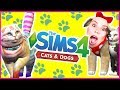 THE SIMS 4 CATS & DOGS!!!!!  NEW Expansion!  [ Trailer Reaction ]