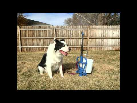All Tie Anchor post for Dogs - an innovative dog tie out system - by Good N Useful