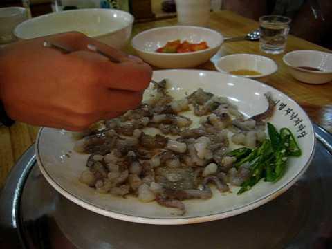 Eating Sannakji (live octopus) in South Korea