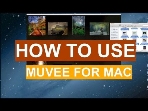 How To Use Muvee Reveal Express For Mac