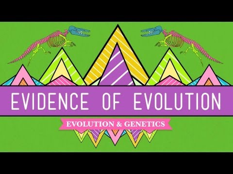 Evolution: It's a Thing - Crash Course Biology #20