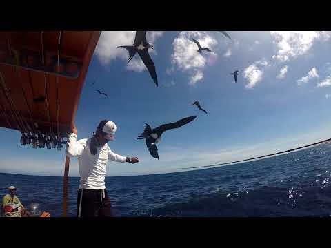 Flyfishing on Christmas Island
