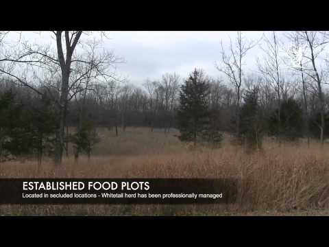 Whitetail North - 80 Acre Hunting Parcel at Otter Creek